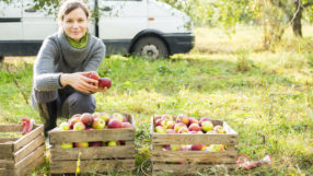 safety tips for fall businesses