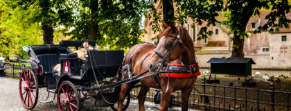 Insurance for Horse-Drawn Carriage Rides